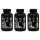 3 x Tribulus Terrestris (com maca) 600mg - 120 Cápsulas - Super Nutrition